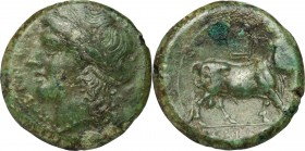 Greek Italy. Samnium, Southern Latium and Northern Campania, Cales. AE 20 mm, 265-240 BC. D/ Head of Apollo left, laureate. R/ Man-headaed bull right;...
