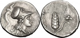 Greek Italy. Southern Lucania, Metapontum. AR Half Shekel, Hannibalic issue 215-207 BC. D/ Head of Athena right, wearing crested Corinthian helmet. R/...