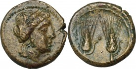 Greek Italy. Southern Lucania, Metapontum. AE 17 mm, late 3rd century BC. D/ Head of Demeter right, wearing wreath of corn-ears. R/ Two barley ears. H...