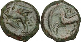 Sicily. Kainon. AE 21 mm, c. 365 BC. D/ Griffin prancing left; below, grasshopper. R/ Horse prancing left; above, star. CNS I, 10. AE. g. 8.78 mm. 21....