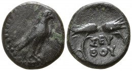 Kings of Thrace. Uncertain mint. Seuthes III 323-316 BC. Bronze Æ