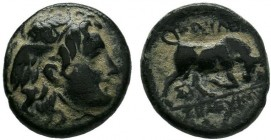 SELEUKID KINGS OF SYRIA. Seleukos I Nikator, 312-281 BC. AE Bronze, Sardes (?). Winged head of Medusa to right. Rev. BAΣIΛEΩΣ / ΣΕΛΕΥΚOY Bull butting ...