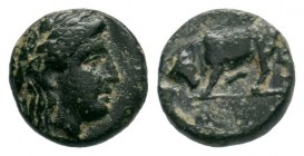 MYSIA. Gambrion. Ae (4th century BC). Obv: Laureate head of Apollo right. Rev: Bull butting left. SNG France 896-9; SNG Copenhagen 156.  Condition: Ve...