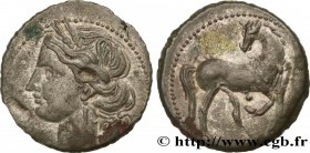 ZEUGITANA - CARTHAGE Type : Statère de billon ou trihémishekel  Date : c. 203-201 AC.  Mint name / Town : Carthage, Zeugitane  Metal : billon  Diamete...