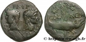 AUGUSTUS and AGRIPPA Type : Dupondius  Date : c. 10-14 AD.  Mint name / Town : Nîmes, Gaule  Metal : bronze  Diameter : 27  mm Orientation dies : 9  h...