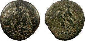 Greek, Ptolemaic Kingdom of Egypt, Ptolemy VI Philometor and Ptolemy VIII, AE, Alexandria 69.94 g, 41 mm, aVF  Obverse: Laureate head of Zeus-Ammon ri...