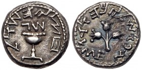 Judaea, The Jewish War. Silver 1/2 Shekel (6.77 g), 66-70 CE. EF