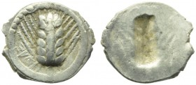 Lucania, Metapontion, Obol, c. 540-510 BC; AR (g 0,31; mm 11; 12); MET, barley ear, Rv. Same type incuse. HNItaly 1469; Noe 66. Lightly toned, about e...