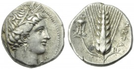 Lucania, Metapontion, Didrachm, c. 225-200 BC; AR (g 8,00; mm 20; h 9); Veiled head of Demeter r., wearing wreath of grain, earrings and necklace, on ...