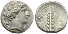 Lucania, Metapontion, Stater, c. 340-330 BC; AR (g 7,97; mm 19; h 8); Veiled head of Demeter r., wearing wreath of grain, earrings and necklace, on l....