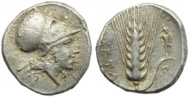 Lucania, Metapontion, Stater, c. 340-330 BC; AR (g 7,98; mm 22; h 10); Head of Tharragonas r., wearing Corithian helmet, without crest; on r., Σ, Rv. ...