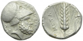 Lucania, Metapontion, Stater, c. 340-330 BC; AR (g 7,78; mm 20; h 11); ΛEYKIΠΠΟΣ, head of Leucippus r., wearing Corinthian helmet; on l., seated dog. ...