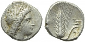 Lucania, Metapontion, Stater, c. 400-340 BC; AR (g 7,92; mm 20; h 5); Head of Demeter r., wearing barley wreath, earrings and necklace; on r., [ΔAI], ...