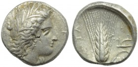 Lucania, Metapontion, Stater, c. 400-340 BC; AR (g 7,92; mm 20; h 11); Head of Demeter r., wearing barley wreath, earrings and necklace; on r., [ΔAI],...