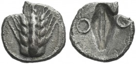 Metapontum. Diobol. Rare