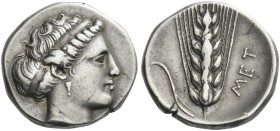 Metapontum. Nomos. Rare.
