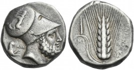 Metapontum. Dinomos. Rare and in fine condition for this difficult issue.