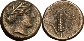 Greek Italy. Southern Lucania, Metapontum. AE 15 mm, c. 300-250 BC. D/ Wreathed head of Demeter right. R/ Barley ear with leaf to left. Johnston Bronz...