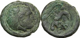 Greek Italy. Bruttium, Kroton. AE 20 mm, 2nd half of 4th century BC. D/ Head of Herakles right, wearing lion's skin. R/ Eagle flying right, holding sn...