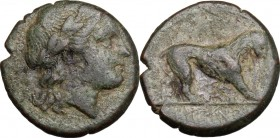 Greek Italy. Bruttium, Rhegion. AE 15 mm, 260-215 BC. D/ Head of Apollo right, laureate. R/ Lion right. HN Italy 2545. AE. g. 3.17 mm. 15.00 R. About ...