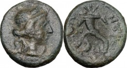 Sicily. Aitna. AE, after 212 BC. D/ Head of Persephone right. R/ Cornucopiae. CNS III, 10. AE. g. 3.82 mm. 16.00 F.