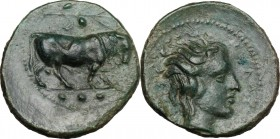 Sicily. Gela. AE Tetras, 420-405 BC. D/ Bull right; above, olive-branch with berries; in exergue, three pellets. R/ Head of river god right, horned. C...