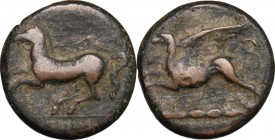 Sicily. Kainon. AE 21 mm, c. 365 BC. D/ Bridled horse prancing left. R/ Griffin leaping left; below, exergual line. CNS I, 10. AE. g. 9.07 mm. 21.00 A...