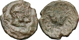 Sicily. Leontini. Roman Rule. AE 17mm, 3rd century BC. D/ Jugate heads of Apollo and Artemis right. R/ Two barley-ears. CNS III, 10. AE. g. 2.31 mm. 1...