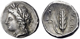 Greek Coins   Metapontum  Nomos circa 330-290, AR 7.95 g. Head of Demeter l., wearing earring and barley wreath. Rev. Ear of barley, with leaf to l.,...