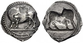 Greek Coins   Sybaris  Nomos circa 550-510, AR 7.73 g. Bull standing l., head turned back. Rev. The same type r., incuse. SNG ANS 817. Historia Numor...