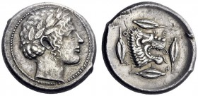 Greek Coins   Leontini  Tetradrachm circa 440, AR 17.52 g. Laureate head of Apollo r. Rev. Lion's head r., jaws open and tongue protruding; around, f...
