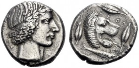 Greek Coins   Leontini  Tetradrachm circa 420-415, AR 16.91 g. Laureate head of Apollo r. Rev. Lions' head r., jaws open and tongue protruding; aroun...