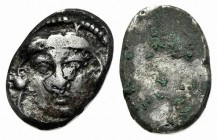 Etruria, Populonia, c. 300-250 BC. AR 20 Asses (16mm, 7.20g). Youthful head of Herakles facing; [X-X] flanking neck, below. R/ Blank. EC Group XIII, S...