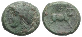 Northern Campania, Cales, c. 265-240 BC. Æ (20mm, 7.28g, 6h). Laureate head of Apollo l.; star to r. R/ Man-headed bull standing r., head facing; star...