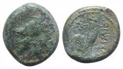 Northern Campania, Suessa Aurunca, c. 265-240 BC. Æ (19mm, 6.01g, 6h). Helmeted head of Minerva l. R/ Cock standing r.; star to upper l. Sambon 873; H...