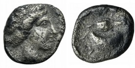 Southern Campania, Cumae, c. 420-385 BC. AR Didrachm (19mm, 6.47g, 5h). Female head r. R/ Large mussel shell; grain kernel above. HNItaly 532; SNG ANS...