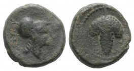 Northern Apulia, Arpi, c. 215-212 BC. Æ (14.5mm, 4.05g, 1h). Helmeted head of Athena r. R/ Bunch of grapes. HNItaly 650; SNG ANS 646. Green patina, Go...