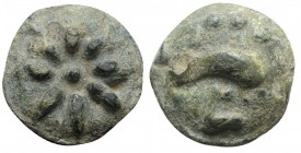 Northern Apulia, Luceria, c. 217-212 BC. Cast Æ Teruncius (27mm, 19.25g). Star of eight rays on a raised disk. R/ Dolphin r.; three pellets above, L b...