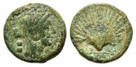 Northern Apulia, Luceria, c. 211-200 BC. Æ Biunx (18mm, 6.50g, 5h). Veiled and wreathed head of Ceres r. R/ Scallop shell. HNItaly 681; SNG ANS 708; S...