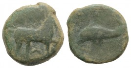 Northern Apulia, Salapia, c. 275-250 BC. Æ (19mm, 6.28g, 12h). Horse stepping r. R/ Dolphin l. HNItaly 685; SNG ANS 733. Green patina, Fine