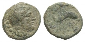 Northern Lucania, Paestum, c. 218-201 BC. Æ Quadrans (13mm, 2.78g, 6h). Diademed and bearded male head r. R/ Dolphin r.; branch below. Crawford 11/2; ...