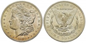 Morgan Dollar, San Francisco, 1880 S, AG Conservation : FDC
