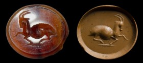 An italic carnelian intaglio. Antelope.