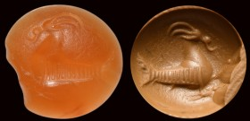 A roman italic carnelian intaglio. Seagoat.