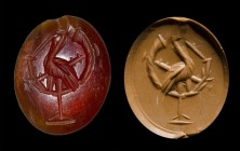 A roman carnelian intaglio. Ibis playing the buccina.