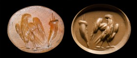A roman carnelian intaglio. Eagle and cornucopia. 