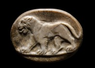 A roman agate cameo. Lioness. 