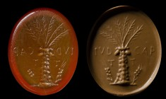 A roman carnelian intaglio. Palm tree and latin letters. 