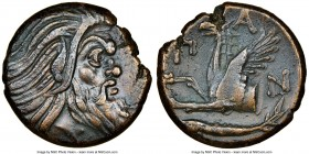 CIMMERIAN BOSPORUS. Panticapaeum. 4th century BC. AE (20mm, 12h). NGC Choice VF. Head of bearded Pan right / Π-A-N, forepart of griffin left, sturgeon...
