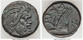 CIMMERIAN BOSPORUS. Panticapaeum. 4th century BC. AE (19mm, 6.84 gm, 11h). XF. Head of bearded Pan right / Π-A-N, forepart of griffin left, sturgeon l...